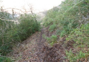 ruta de senderismo con salida y llegada a Torrecilla En Cameros